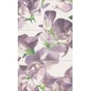 Colour Violet Bloom Violet