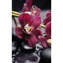 City Orchid Панно 80х50 (из 4-х плиток)