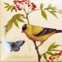 Botanic Birds Decors 1