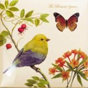 Botanic Birds Decors 2