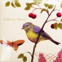 Botanic Birds Decors 3
