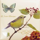 Botanic Birds Decors 4