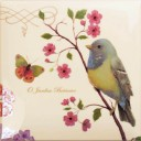 Botanic Birds Decors 5