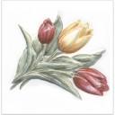 TFA013 Декор Оранжерея