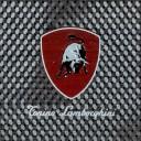 Вставка Montecarlo TL Logo