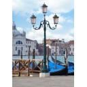 Азалия Венеция 1