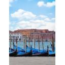 Азалия Венеция 2