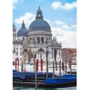 Азалия Венеция 4