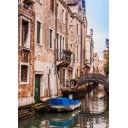 Азалия Венеция 5