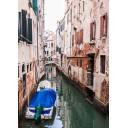 Азалия Венеция 6