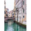 Азалия Венеция 7