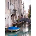 Азалия Венеция 8