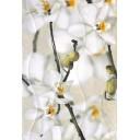 Плитка настенная Энигма 3 тип 2 мелкий цветок 27,5х40