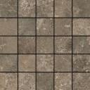 Мозаика Червиния Земля 28х28