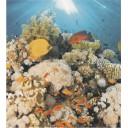 Ceradim Dec Corals (панно из 2-х шт)